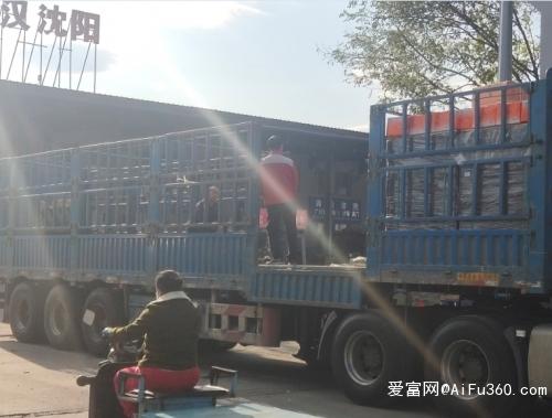 成都到安庆市物流公司 直达